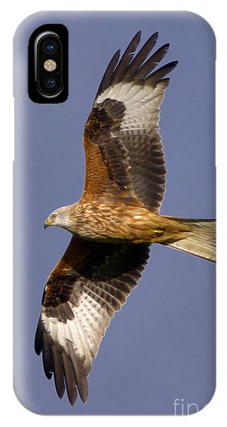The Red Kite IPhone Case