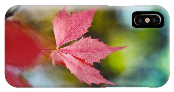 The Red Leaf  IPhone Case