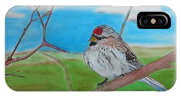 The Redpoll IPhone Case