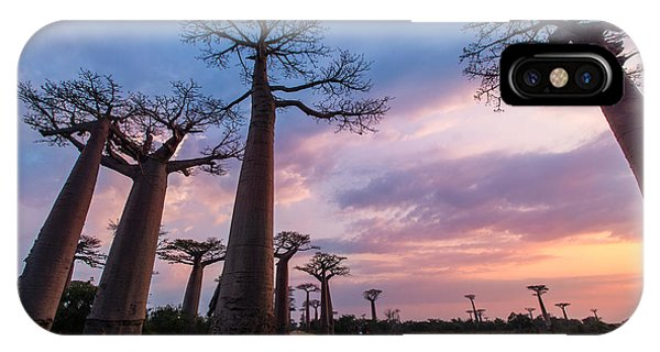 The Road To Morondava IPhone Case