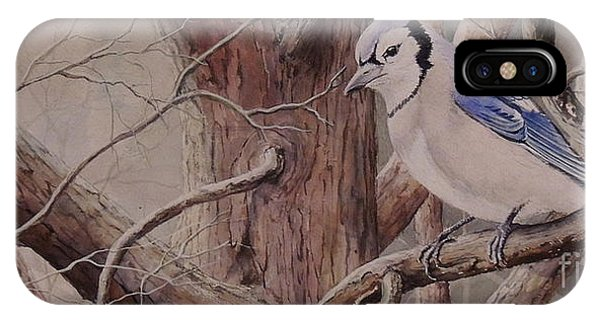 The Roost Sold IPhone Case