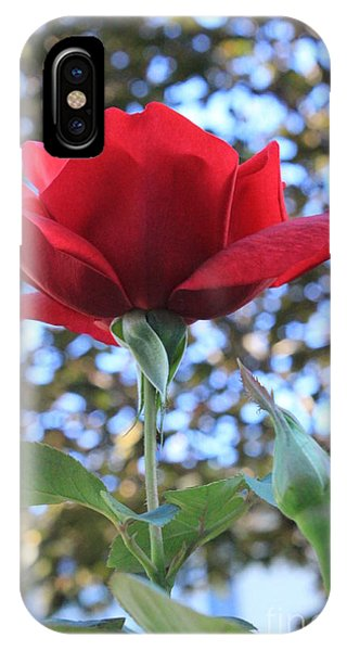 The Rose And Bud IPhone Case
