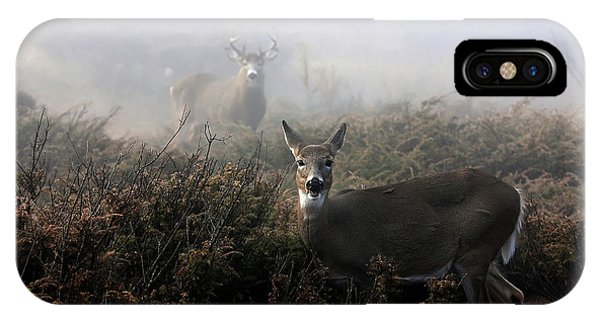 White Tailed Deer iPhone Case - The Rut In On - White-tailed Deer by Jim Cumming
