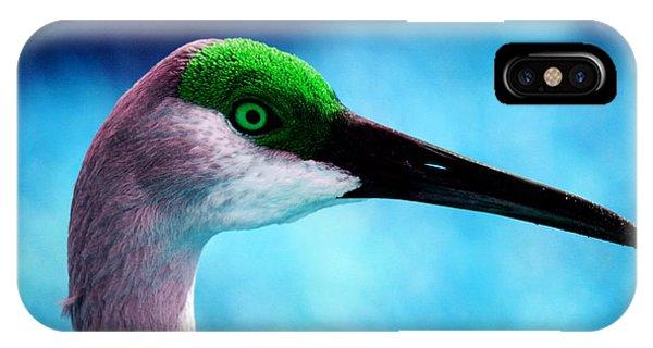 The Sandhilll Crane  IPhone Case