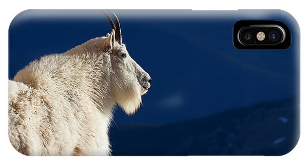 The Seer IPhone Case
