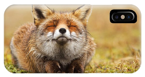 Red iPhone X Case - The Smiling Fox by Roeselien Raimond
