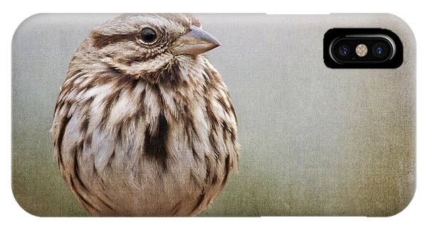The Song Sparrow IPhone Case