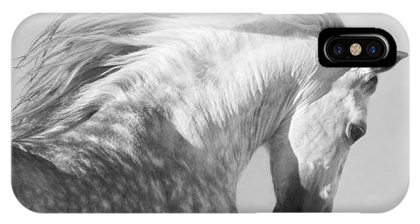 Wild Horses iPhone Case - The Spanish Stallion Tosses His Head by Carol Walker