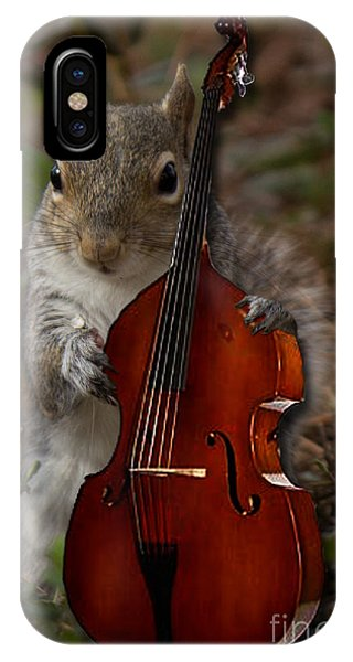 The Squirrel And His Double Bass IPhone Case