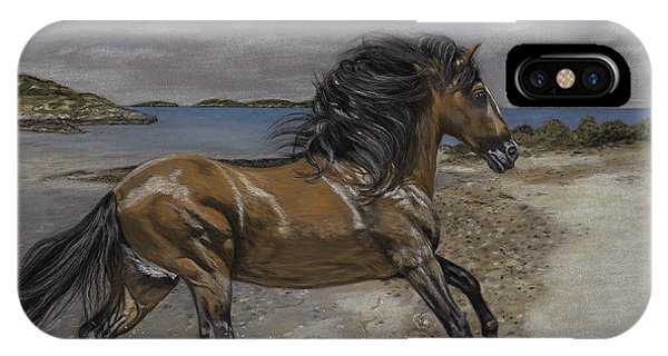 The Stallion And The Exumas IPhone Case