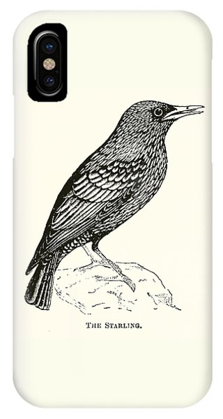 Starlings iPhone Case - The Starling by English School