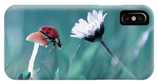 Macro iPhone Case - The Story Of The Lady Bug That Tries To Convice The Mushroom To Have A Date With The Beautiful Daisy by Fabien Bravin