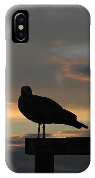 The Sunset Perch IPhone Case