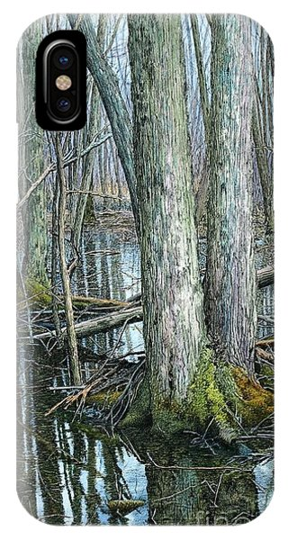 The Swamp 3 IPhone Case