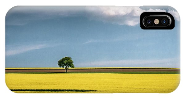 Cloud iPhone Case - The Tree And The Cloud by Andreas Wonisch