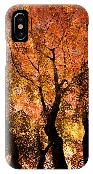 The Trees Dance As The Sun Smiles IPhone Case