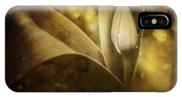 Bloom iPhone Case - The Unveiling 2 by Scott Norris