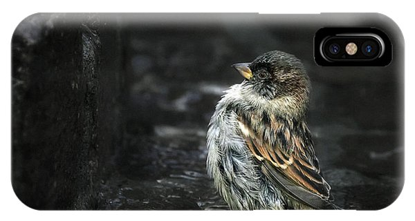 Wings iPhone Case - The Wall by Holger Droste