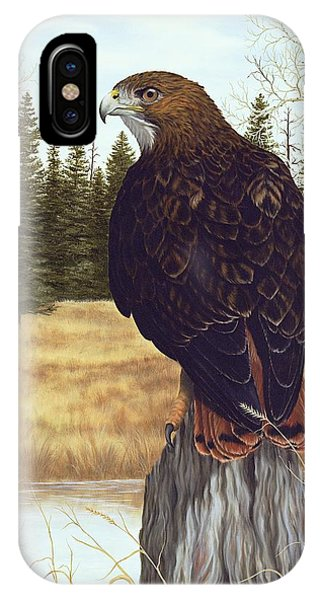 Red Tail Hawk iPhone Case - The Watchful Eye by Rick Bainbridge