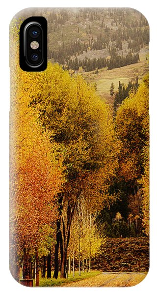 The Way Of Autumn IPhone Case