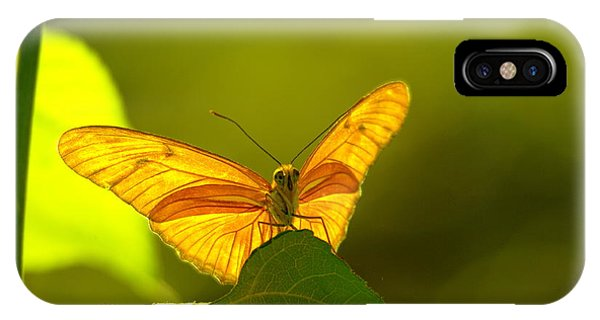 Little Things iPhone Case - Then A Butterfly by Jeff Swan