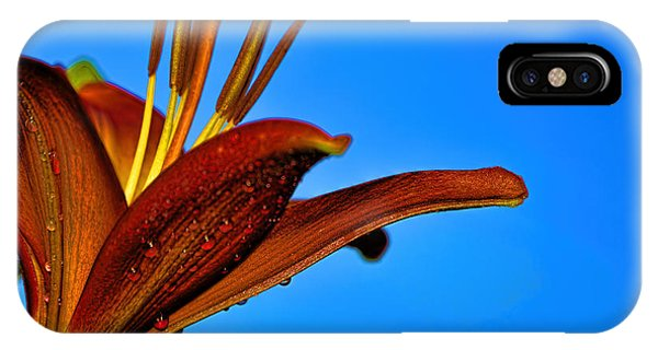 Thirsty Lily In Hdr Art  IPhone Case