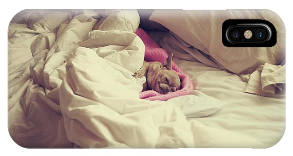 Chihuahua iPhone Case - This Is The Life by Laurie Search