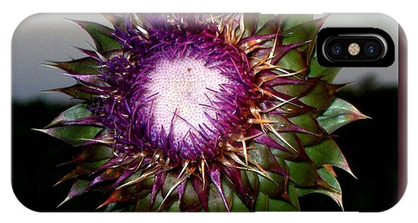 Thistle Night IPhone Case