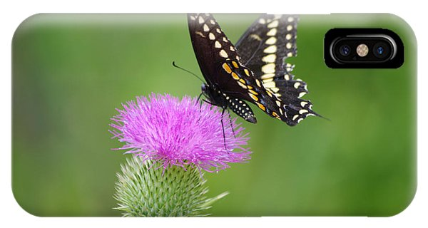 Thistle Rider IPhone Case
