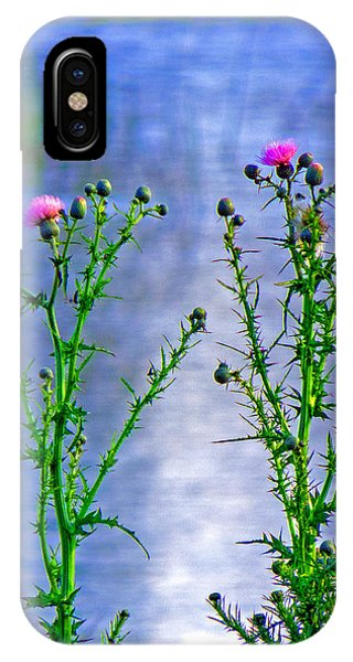 Thistle Phone Case by T Guy Spencer