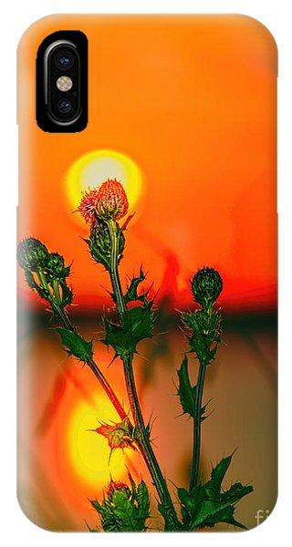 iPhone Case - Thistle At Sunset by Viktor Birkus