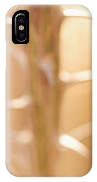 iPhone Case - Thorns On The Stem Of An Ocotillo by Phil Schermeister