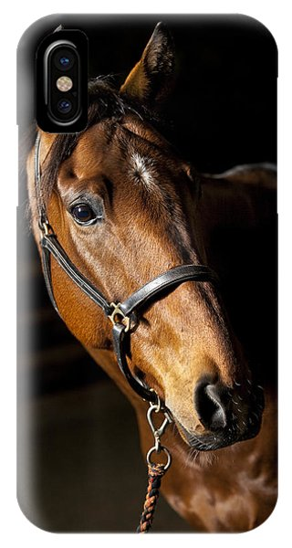 Equine iPhone Case - Thoroughbred Race Horse by Samuel Whitton