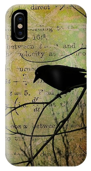 Avian iPhone Case - Thoughts Of Crow by Gothicrow Images