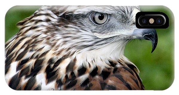 The Threat Of A Predator Hawk IPhone Case