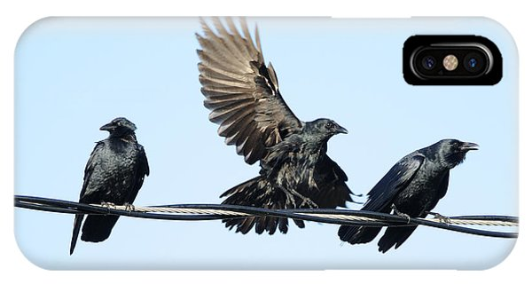 Three Crows On A Wire. IPhone Case