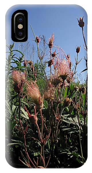 three flowered avens - Geum triflorum - 12MA30-2 Phone Case by Robert G Mears