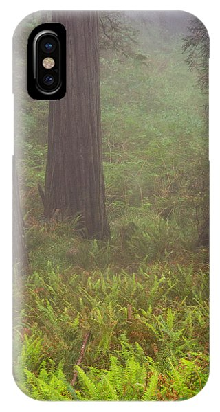 Three Foggy Muskeeters IPhone Case