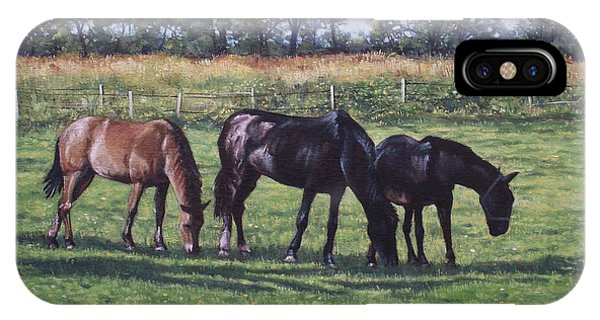Three Horses In Field IPhone Case