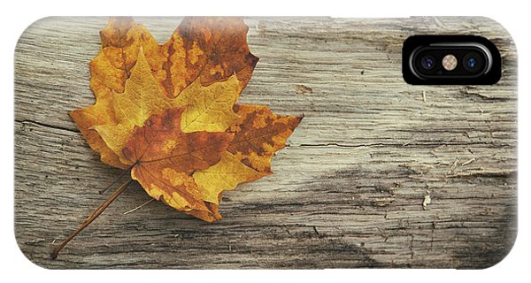 Yellow iPhone Case - Three Leaves by Scott Norris