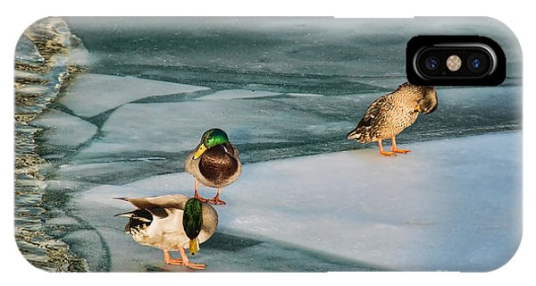 Three Mallards On Partly Frozen Lake IPhone Case
