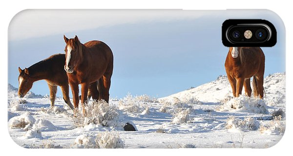 Three Mustangs In Snow IPhone Case