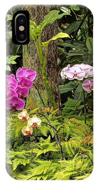 Three Orchid And A Tree IPhone Case