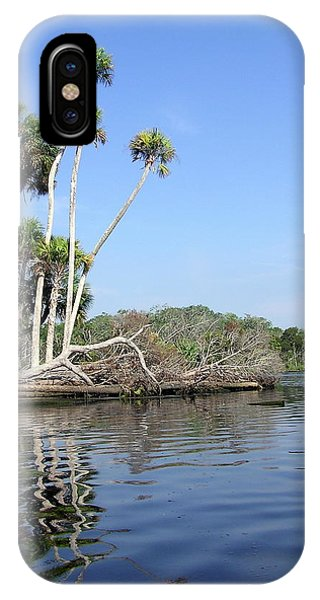 Three Palms Reflected In The Chassahowitzka River IPhone Case