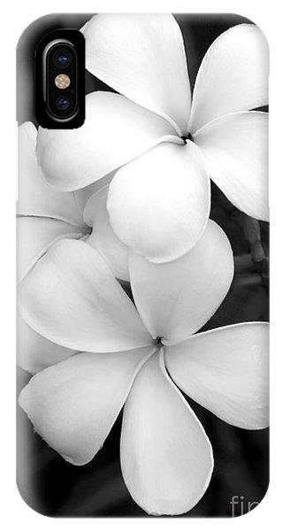 Macro iPhone Case - Three Plumeria Flowers In Black And White by Sabrina L Ryan