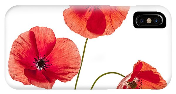 Cutout iPhone Case - Three Red Poppies by Elena Elisseeva