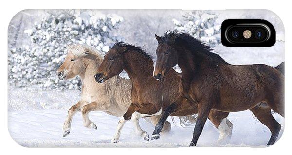Amazing iPhone Case - Three Snow Horses by Carol Walker