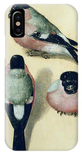 Albrecht Durer iPhone Case - Three Studies Of A Bullfinch by Albrecht Durer