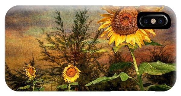 Stamen iPhone Case - Three Sunflowers by Adrian Evans