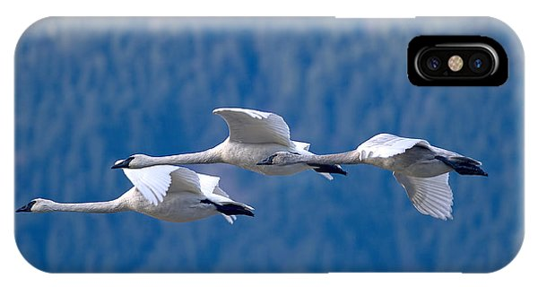 Three Swans Flying IPhone Case